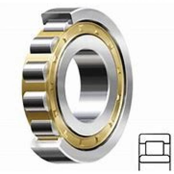 0.394 Inch | 10 Millimeter x 1.378 Inch | 35 Millimeter x 0.748 Inch | 19 Millimeter  GENERAL BEARING 55600  Angular Contact Ball Bearings #1 image